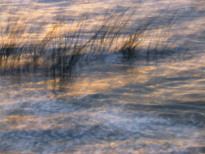Furesoe-Grundejer-fotos-201401-(16)