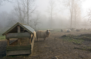 Furesoe-Grundejer-fotos-201401-(29)