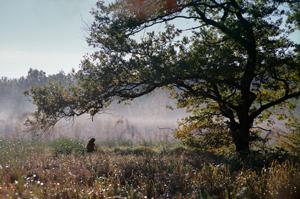 Furesoe-Grundejer-fotos-201401-(36)