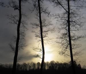 Furesoe-Grundejer-fotos-201401-(9)